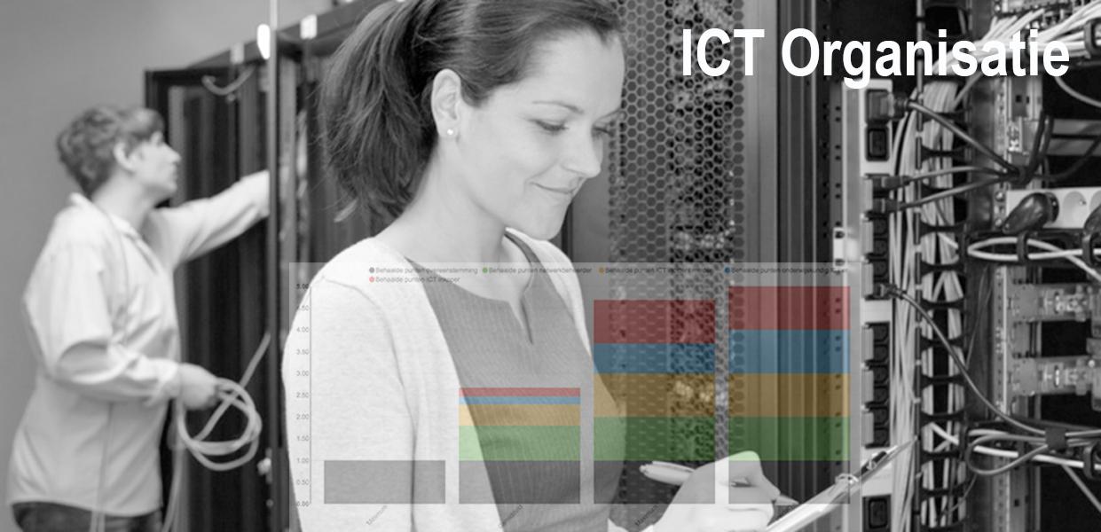 Pillars meet goed netwerkbeheer, probleemoplossing, effectieve inkoop van ICT middelen en een onderwijskundig ICT'er die zich met de inhoud van digitaal onderwijs bezighoudt.